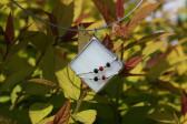 jewel white - Tiffany jewelry