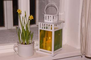 lantern yellow-green - Tiffany jewelry